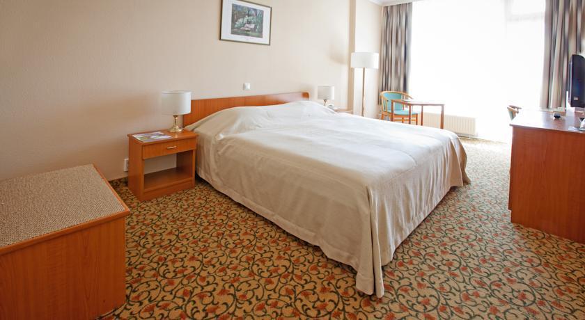 Image #2 - Hotel Aranyhomok - Kecskemét