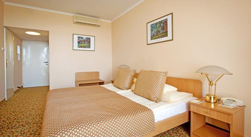 Image #4 - Hotel Aranyhomok - Kecskemét