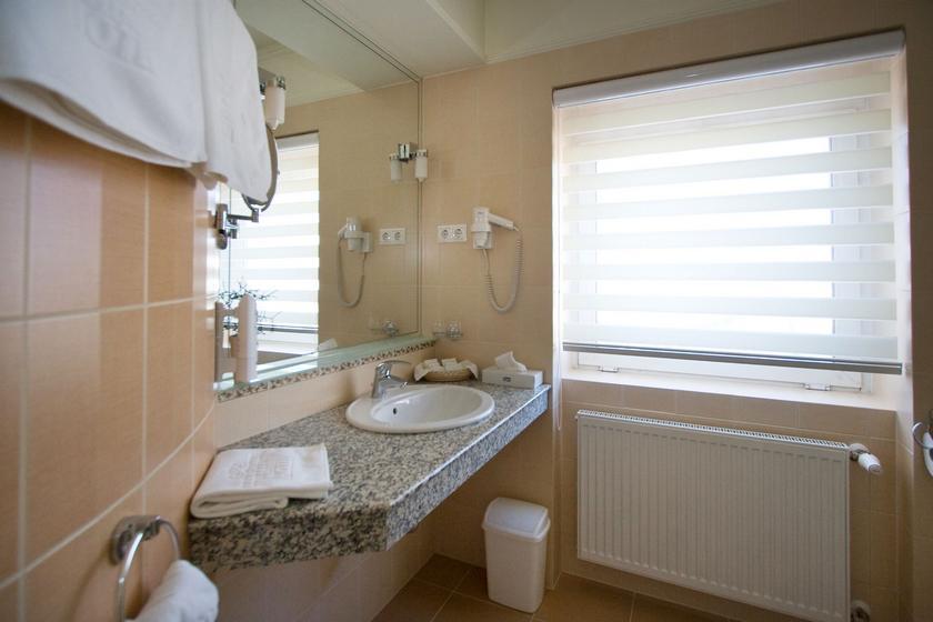 Image #9 - Hotel Aranyhomok - Kecskemét