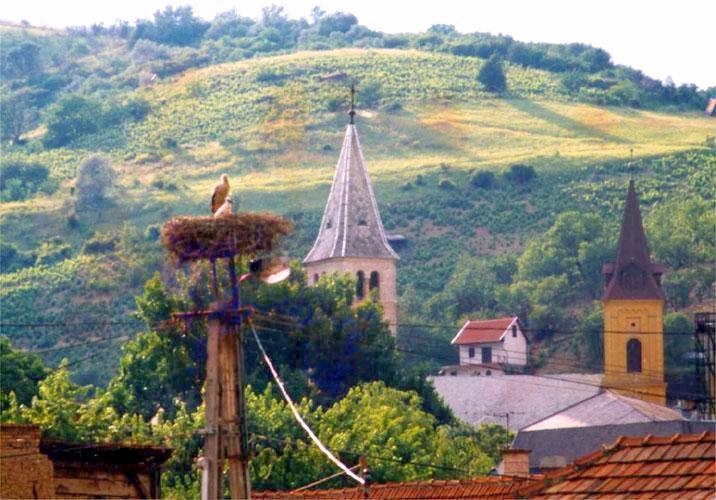 Image #10 - Hotel Millennium Tokaj - Tokaj